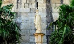 Capua, Italy (Sarah Georgiou) Tags: capua italy religion statue palm trees