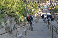 DSC_3423monkeystairsab (BasiaBM) Tags: swayambhunath monkey temple kathmandu nepal