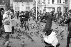 Photograph the pigeons (Arne Kuilman) Tags: pentax k1000 50mm 50mmf14 analogue analoog ilford xp2 scan amsterdam nederland netherlands street straat v600 tourists pigeons duiven dam damsquare damplein feeding voeren