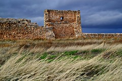 Anol shalom, anol sheh... (... Alicia H. Trtoles) Tags: castle medieval archaeology cultural heritage landscape nature naturpic hill au autumn spain soria views tower architecture rampart wall battlement fortress muslim green grass brown