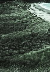 Warkworth Beach (stuartnorman1) Tags: warkworth ancient town uk england northumberland north amble beach pebbles sand coarse grain water ripples waves wave wavey cold cool blue azure cyan aqua long longsands longshore dunes rocks driftwood shore horizon longshoredrift novemberwaves surf high hightide amblebeach longexposure 30secondexposure dslr nikon nikonowner nikonphotography nikonworld nikonearth nikonnature nature natural northsea ocean sevenseas sea dusk lighthouse coquet coquetisland harbour ambleharbour autumn seasonal