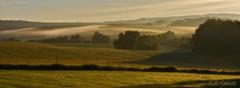 IMG_5943_Change has come. (lada/photo) Tags: raw landscape fog fenceline ladaphoto