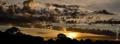 Sunset at Lake Bonney (Cathy Cates (aka CrafteeCC)) Tags: 116in2016 australia lakebonney southaustralia