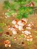 Rim Song Hui (nokoredstar) Tags: aquarelle peinture coréedunord pyongyang paysage broderie