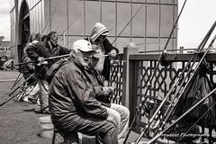 Street 213 (`ARroWCoLT) Tags: samsung street photography istanbul karaky galata bw siyah beyaz blackwhite black white monochrome sokak balk fish fisher fishing line waiting sitting chair old man underground horsemackerel istavrit nxmini f18 bridge blackandwhite bnwdemand bnwpeople bnw bnwstreet ishootpeople