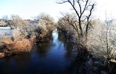 nahefrost (joachim.d.) Tags: nahefrost nahe frost kälte rauhreif rhinelandpalatinate rheinlandpfalz staudernheim fluss