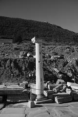 IMG_4454 (goaniwhere) Tags: ancientcity ancientruins ephesus historicalsite travel outdoors