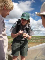 Dinosaur PP (Alberta Parks) Tags: interpreter dinosaur provincialpark alberta canada dig fossils people tour hike education interpretive program environmental