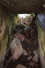 DSC_3665 (porkkalanparenteesi) Tags: hyltty neuvostoliitto bunkkeri abandoned soviet bunker kirkkonummi porkkalanparenteesi