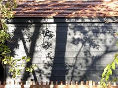 New Structure (^Tom) Tags: p1080990 newriverwalk shadowplay
