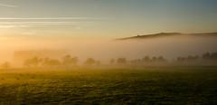 Rising Through the Mist (Peter Quinn1) Tags: longshawestate derbyshire inversion mist november overowlertor mothercap