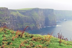 Cliffs of Moher (6) (AntyDiluvian) Tags: ireland tour vagabond driftwood cliff cliffsofmoher countyclare