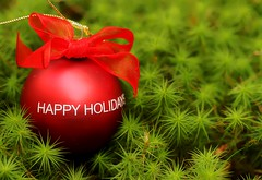 Happy Holidays (Karen_Chappell) Tags: red green round ornament decor decoration nature macro xmas noel christmas canonef100mmf28usmmacro moss ribbon bow holiday