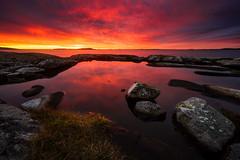 Fiery Sunset (Arvid Björkqvist) Tags: fiery sunset fire red orange yellow reflection rocks stones coast water sea ocean grass light colors sun sky clouds sweden cliffs