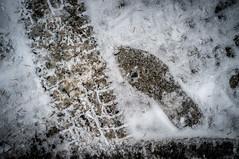 Suivre les traces (maoby) Tags: rouge suivre les traces neige nature