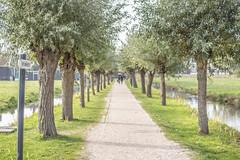 IMG_9574 (digitalarch) Tags: netherlands zaanse schans zaanseschans