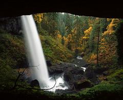 Fall remembers what winter forgets (Zeb Andrews) Tags: oregon waterfalls silverfallsstatepark landscape film mediumformat 6x7 pacificnorthwest fall autumn pentax6x7