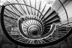 Hamburg stairs (michael_hamburg69) Tags: hamburg germany deutschland treppe stairs stairwell stairway staircase spiral wendeltreppe wendel helix treppenhaustreppenauge escalier geländer handlauf stufen stufe escala escalera scala 台阶 [臺階]táijiē jiētī 阶梯 [階梯]подниматься по лестнице крутая лестница schlosstrasse12 wandsbek monochrome