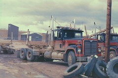 IH 4300 Eagle logger (PAcarhauler) Tags: ih international semi tractor truck trailer