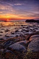 Magic On The Horizon (jsinon) Tags: statepark usa seaweed vertical sunrise rocks newhampshire rye uni snails atlanticocean hdr seacoast odiornepoint goldenlight