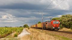 Contentores de Leixões (Nohab0100) Tags: train siemens railway 1900 locomotive cp msc containers wagons comboio locomotiva 4700 contentores vagões alsthom eurosprinter poceirão cpcarga