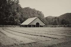 Simple Times (rschnaible) Tags: park bw usa white mountain black mountains history field sepia barn fo