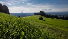 Blick auf St.Gallen (Novacamper) Tags: lake schweiz land bodensee konstanz constance appenzeller stgalleln eggersried