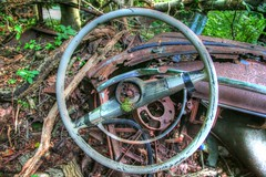 Can you guess the Make by the steering wheel? (Tim Loesch) Tags: abandoned car newjersey woods antiquecar nj parked dashboard steeringwheel mercercounty patina