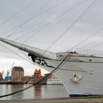 Segelschulschiff »Gorch Fock (1)« im Stralsunder Hafen vor Anker (4) thumbnail