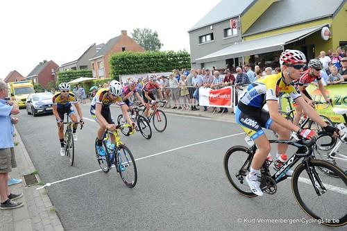 Geel Oosterlo  (44)