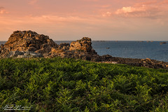 Couleurs bretonnes (David-Martinelli-Photos.net) Tags: ocean sunset sea mer beach rocks eau ngc wave bretagne olympus breizh vague plage coucherdesoleil rochers bzh ocan plougrescant ctesdarmor soleilcouchant