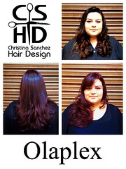 "Olaplex http://www.christinasanchezhairdesign.com • <a style=""font-size:0.8em;"" href=""http://www.flickr.com/photos/69107011@N07/14849028978/"" target=""_blank"">View on Flickr</a>"