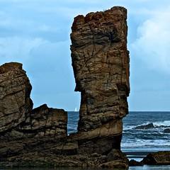 En las rocas :: On the rocks :: 20140811 8465