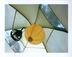 8 9 14 morning view ceiling of tent (EllenJo) Tags: camping summer arizona nature august tent nationalforest lantern campout mingus ceilingfan highaltitude themountain 2014 mingusmountain polaroidlandcamera instantfilm highelevation prescottnationalforest fujifp100c 7200feet yavapaicounty fujiinstantfilm ellenjo summerinarizona ellenjoroberts mingusmountainrecreationarea polaroidpathfinder rollfilmcameraconvertedtopackfilm convertedpathfinder august2014 potatopatchcamground