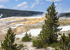 Geyser Landscape (sylvanbobcat) Tags: outdoors nationalpark yellowstone wyoming wilderness geyser thermalpool geothermal thermal