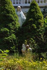 1520 the virgin known as Mary (Violentz) Tags: statue shrine catholic god madonna mary religion jesus mother stjoseph galilee icon holy virgin jew bible christianity bethlehem virginmary blessed babyjesus nazareth motherofgod ourladyofguadalupe ourlady blessedmother holymother hailmary ourladyoflourdes israelite ourladyofgrace ourladyoffatima lawnstatue thevirginknownasmary patricklentzphotography lawnshrine thetheotokos handmaidenofthelord heymarywatchagonnanamethatprettylittlebaby miriammotherofisa