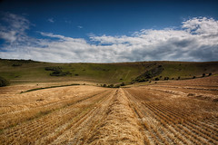 Long Man After Harvest (Phil-Clements) Tags: panorama man field rural downs countryside chalk long wheat south harvest straw figure wilmington