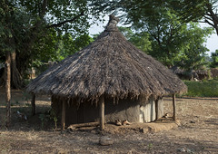 Anuak Traditional Hut In Abobo, The Former Anuak King Village, Gambela Region, Ethiopia (Eric Lafforgue) Tags: poverty africa travel house building tree home horizontal architecture outdoors photography community day exterior village outdoor sudan traditional border straw nobody nopeople tribal structure hut homemade simplicity thatch homestead tradition thatchedroof ethiopia tribe cultures domesticlife anthropology developingcountries thatched lifestyles hornofafrica eastafrica thatchedhut ruralscene colorpicture nonurbanscene colourimage gambela indigenousculture anuak africanculture abobo tukul gambella builtstructure residentialstructure anyuak colourpicture agnwak anywaa ethio1400157