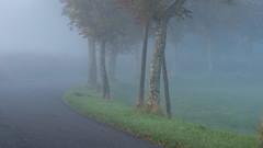 pas de loup (Luc Marc) Tags: road morning mist france fog route paysage tarn brouillard penne brume matin midipyrnes