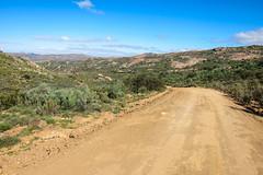 Groenkloof, near Leliefontein, South Africa (jbdodane) Tags: africa bicycle cycletouring cycling cyclotourisme day654 dirtroad groenkloof kamieskroonleliefonteingariesroad northerncape southafrica velo freewheelycom namaqualand namakwaland jbcyclingafrica
