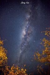 Milky Way at Etosha (Znhlee) Tags: namibia etosha canonef1635mmf28l canon5dii
