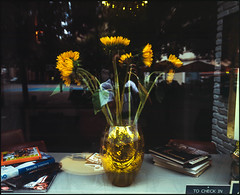 hello vincent! (The Deer Gunter) Tags: fuji sunflowers antwerp agfa fujichrome vincentvangogh mamiya7 veemarkt duoscan provia400x t2500 bburbandreams