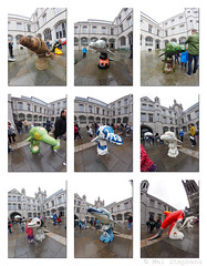 D9072210-batch_tile3 E-M1 8mm iso400 f5.6 1_80s 0.3ev! (Mel Stephens) Tags: uk autumn sculpture art scotland wildlife olympus structure fisheye aberdeen dolphins gps 35 8mm zuiko q3 43 omd 2014 em1 f35 m43 fourthirds mirrorless mmf3 microfourthirds 201409 20140907