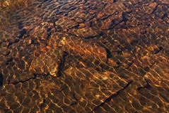 gold (Rosmarie Voegtli) Tags: simplon höhenweg wallis switzerland schweiz valais lake see steine pebbles reflections reflexionen light licht ripples gold golden