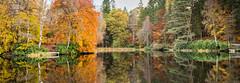 Dunmore loch Perthshire .jpg (Paul Skehan1) Tags: autumn loch leafs scotland perthshire enchanted forest