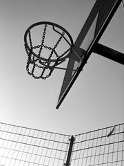 Basket (saxild) Tags: mamiya 645 m645 super sekor 80mm 80mm28 ilford delta 400 delta400 epson scanner flatbed v600 analog film basket basketball nrrebro nrrebroparken cph copenhagen denmark