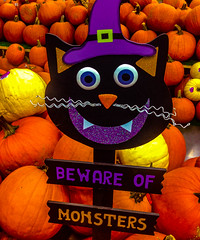 Pumpkin Monster (Sonia Argenio Photography) Tags: bewareofmonsters bysoniaa flickr flickrsoniaargenio yellow black blueeyes buckle carrotnose eyes flickrsoniasgallery hat monster nose orange outdoor photographer photography pumkins pumpkin pumpkinpatch purple sign teeth whiskers