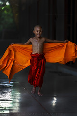 _MG_5214-le-17_04_2016_wat-thail-wattanaram-maesot-thailande-christophe-cochez-cop (christophe cochez) Tags: burmes burma birmanie birman myanmar thailand thailande maesot myawadyy monk bonze novice religion watthailwattanaram travel voyage bouddhisme buddhism portrait