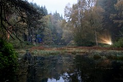 2016 - 14.10.16 Enchanted Forest - Pitlochry (19) (marie137) Tags: enchanted forest pitlochry mobrie137 scotland lights music people water reflection trees shows food fire drink pit patter shapes art abstract night sky tour family walk path bells smoke disco balls unusual whisperer bridge wood colour fun sculpture day amazing spectacular must see landscape faskally shimmer town