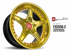 FXS550-C | Polished Dubai Gold